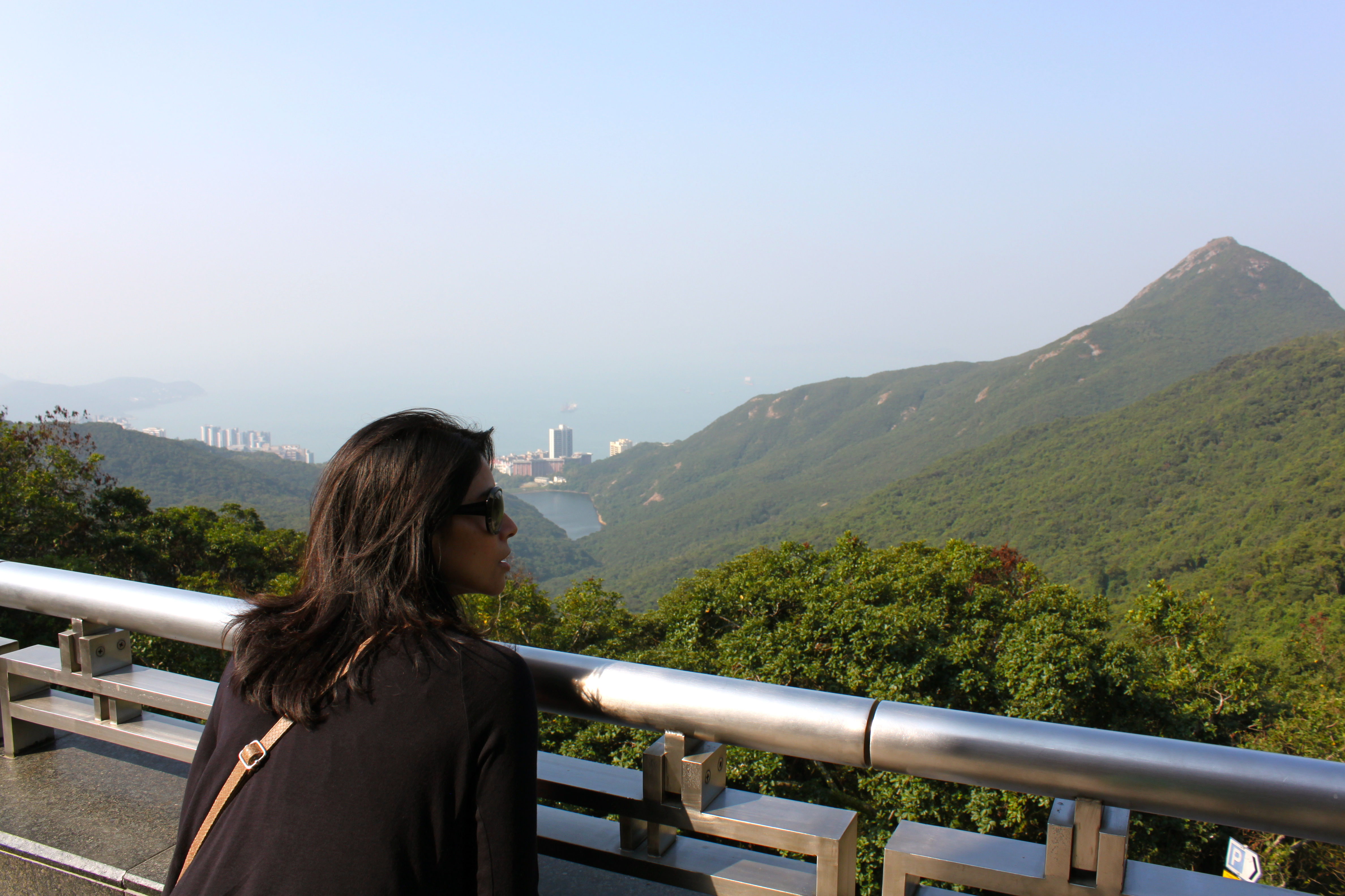 36 Hours In Hong Kong The Peak Man Mo Temple Ozone Amp More Alicia Tastes Life