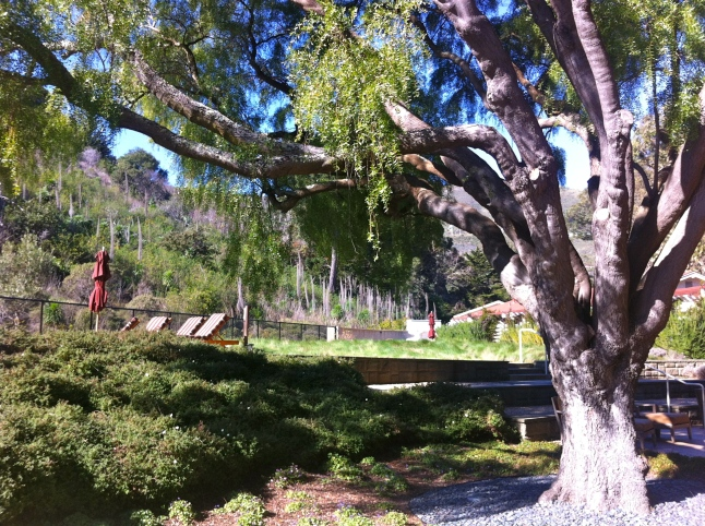 Cavallo Point Meditation Area