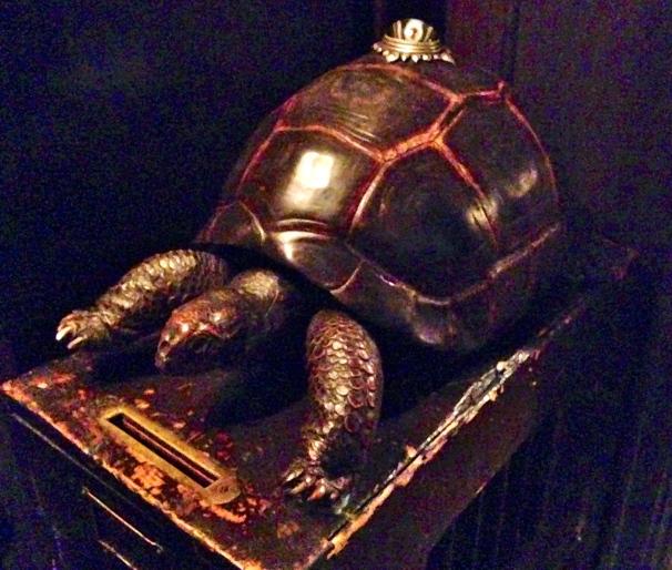 Tortoise Club Tortoise