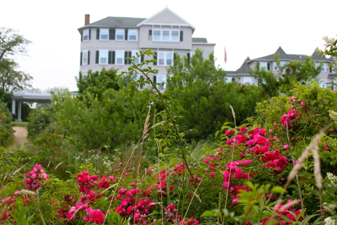 Flowers and View of the Harbor View Inn from Beach