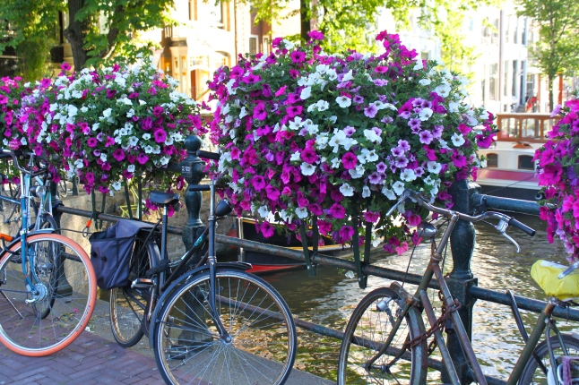 Amsterdam Bikes Flowers