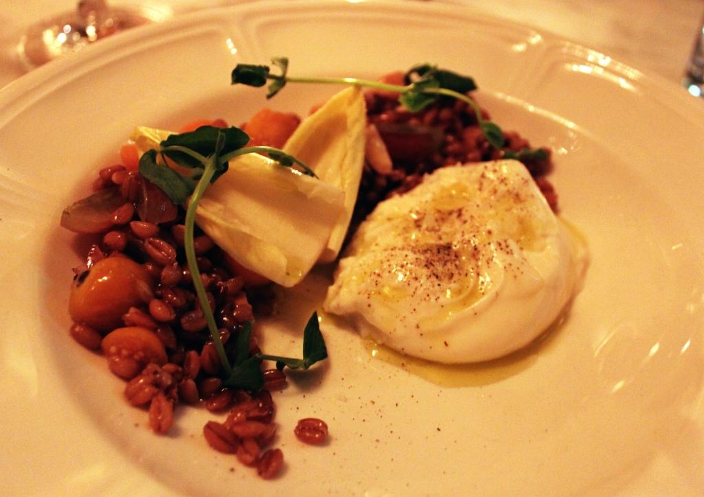 Celeste Chicago Anson Mills Farro & Burrata Salad